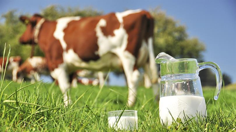 Çiftçiye 284 milyon liralık destek