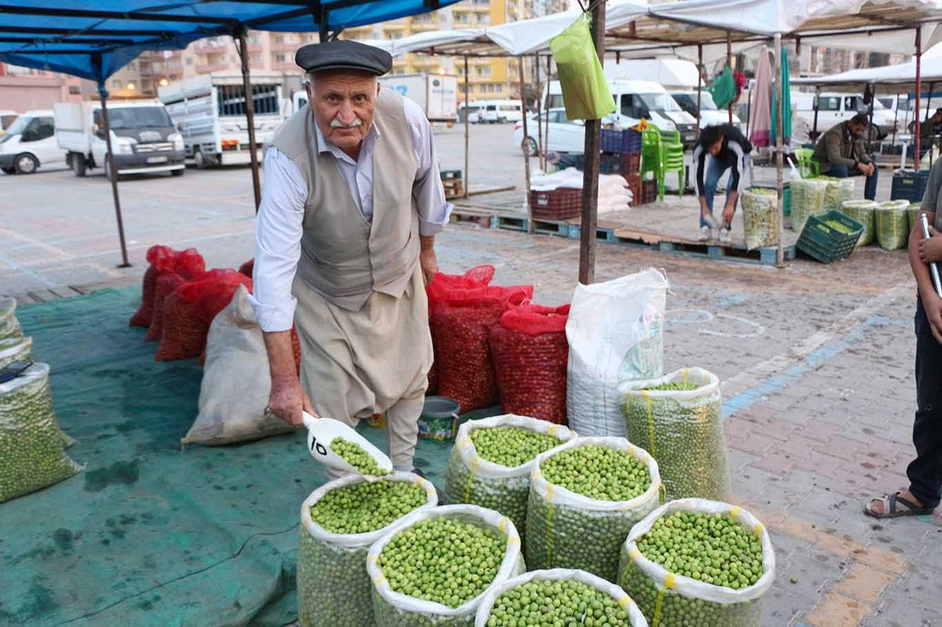Kızıltepe'de zeytin hareketliliği
