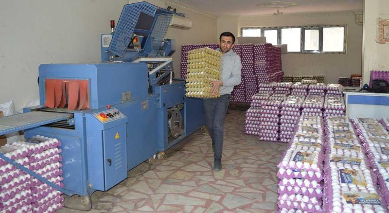 Irak'la sınır kapılarının kapatılması yumurta fiyatlarını düşürdü