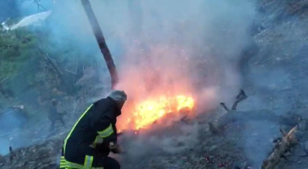 Amasya'da ormanda çıkan yangın büyümeden söndürüldü