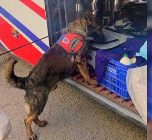 Mardin'de yolcu otobüsünde uyuşturucu ele geçirildi