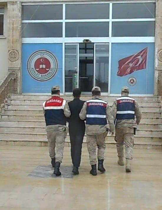 Mardin'de, kaçak kazı yapan 5 kişiye suçüstü