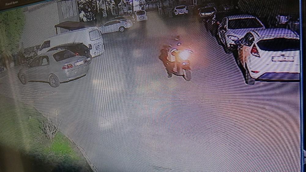 Hırsızdan pes dedirten pişkinlik: Sitenin duvarından bahçeye atladı, hiçbir şey olmamış gibi motoru çalıp gitti