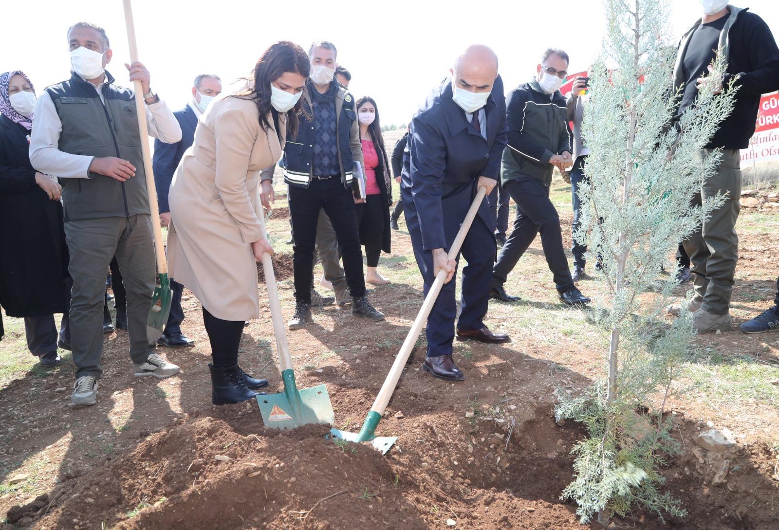 Mardin'de bin 200 fidan toprakla buluşturuldu
