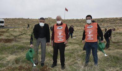 Mardin'de sağlık çalışanları adına hatıra ormanı oluşturuldu