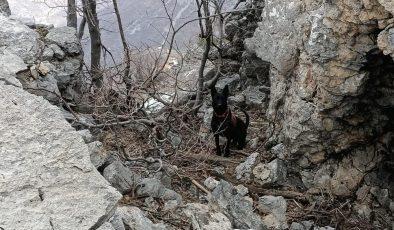 PKK'lı teröristlere ait 2 el yapımı patlayıcı jandarma ekiplerince imha edildi