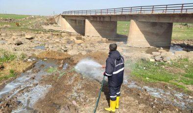 Mardin'de sinek ve haşereye karşı ilaçlama çalışması başlatıldı