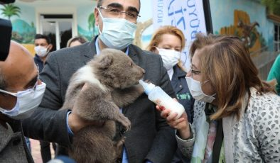 Gaziantep Hayvanat Bahçesinin yeni sakinleri tanıtıldı