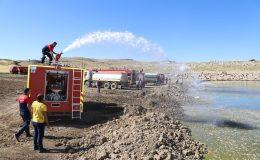 Mardin'de binlerce balık telef olmaktan kurtarıldı