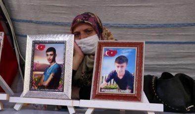 Diyarbakır annelerinden Erdoğan ve Soylu'ya teşekkür