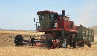 Mardin'de kuraklık nedeniyle hasat erken başladı